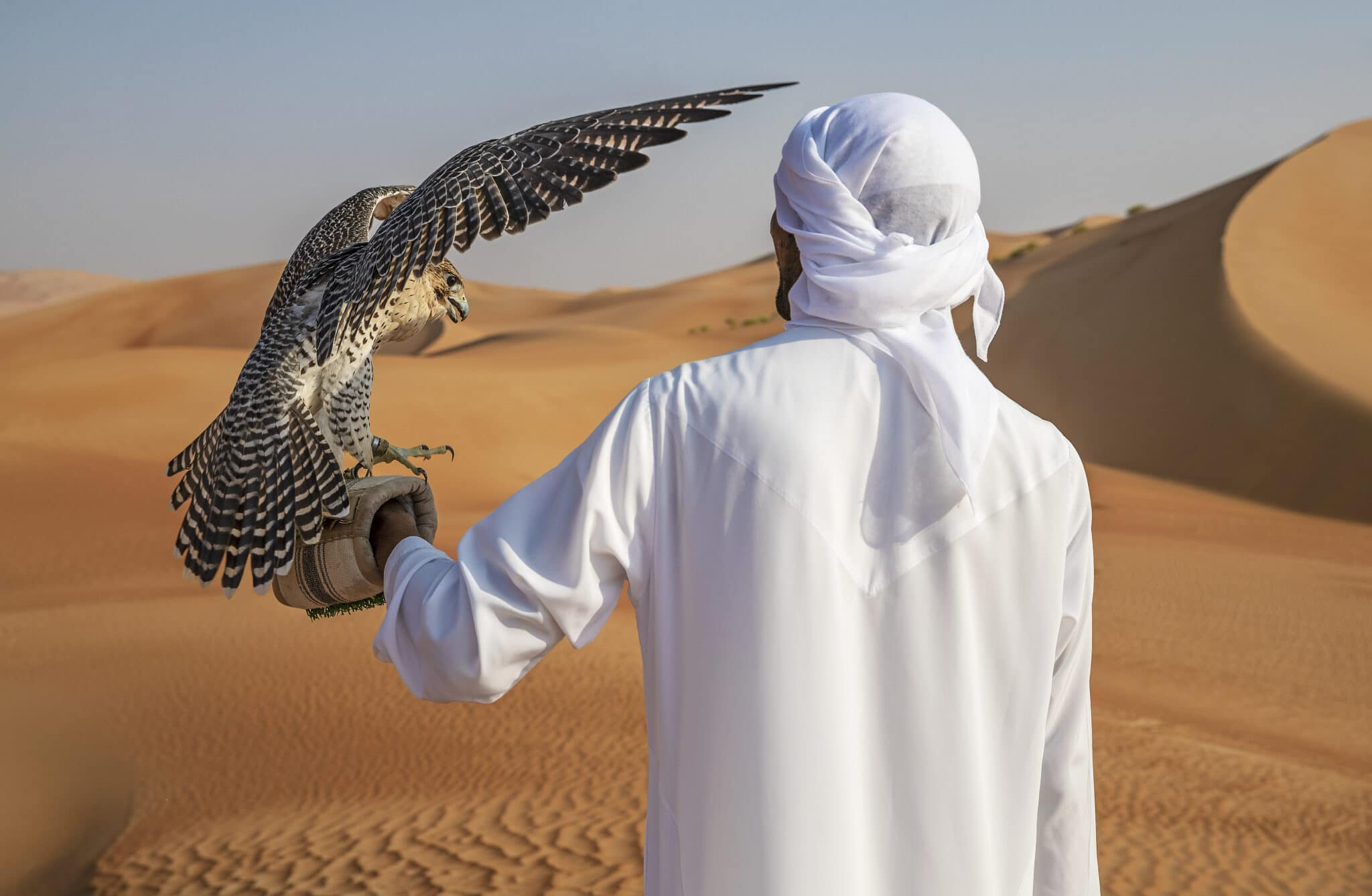 Carrousel 12 Qasr_Al_Sarab_Desert_Resort_by_Anantara_Recreation_Activities_Falcon_Show_Falconer