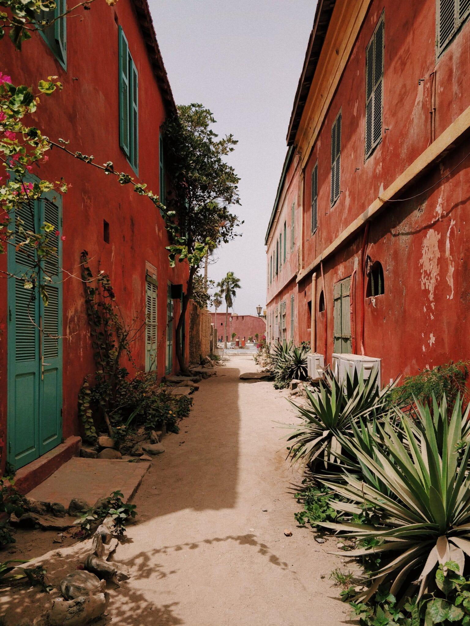 photo 18 ile de Gorée anton-lecock-CExAylTpX4w-unsplash